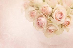 White roses in a vase on white background