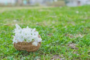 白い花 かご 準備ワーク
