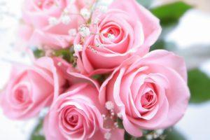 シャドウダンス ピンク 花束